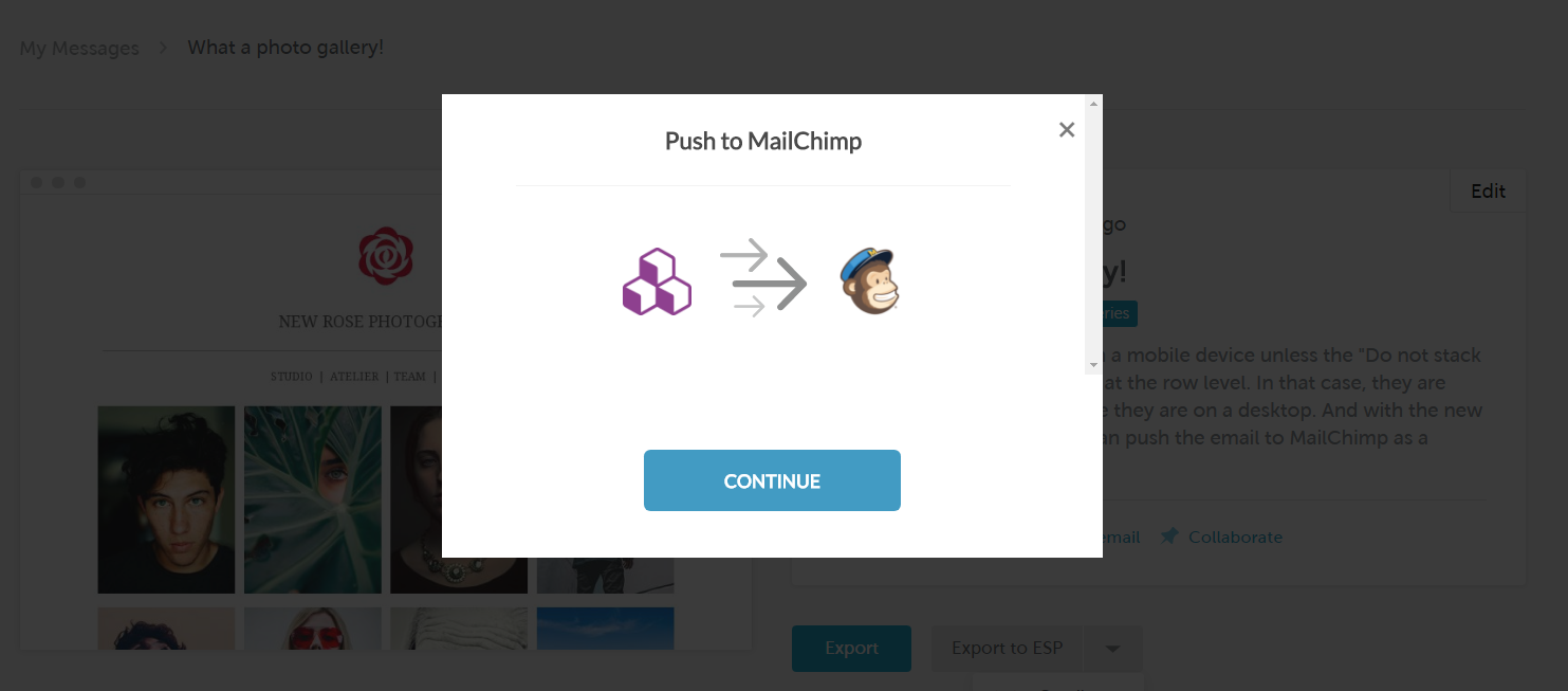 bee_pro_push_to_mailchimp_dialog.PNG