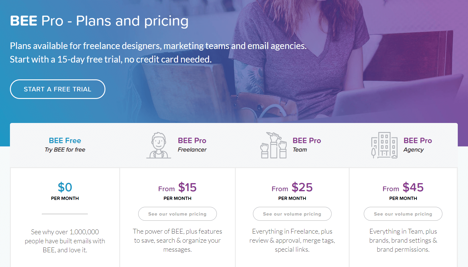 bee_pro_pricing_page.PNG